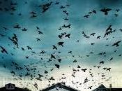 Dark Skies Oscure Presenze