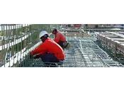 Ricerca carpentieri ferraioli West Canada