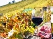 L'autunno di...vino colli euganei