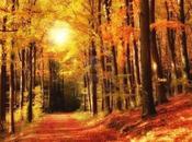Natura d'autunno…