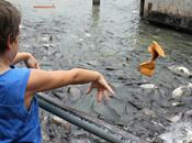 Bangkok scoprire: barca lungo khlongs Thonburi