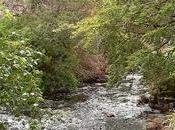 Castle Grounds: camminare alle Ebridi