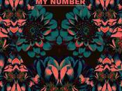 """Number"""" Foals"""