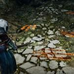 dark-souls-ii_2013_10-31-13_022_copia_jpg_1400x0_q85