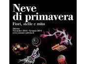 Salerno. accendono Luci D'Artista 2013 2014