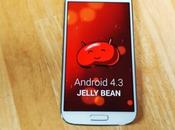 Samsung galaxy riceve Android Jelly bean