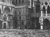 Consorzio Venezia Morta