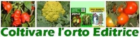 I lavori nell'orto di novembre. Semine, raccolti, compostaggio, pacciamatura, tunnel plastici (2° parte)