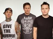 Blink 182: Ferito durante concerto
