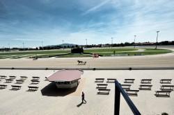 Ippodromo Vinovo - Foto Massimo Pinca