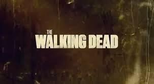 THE WALKING DEAD 4x05 - INTERNMENT