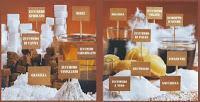 Dossier Zucchero - Il Dolce Veleno