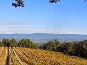 Château Coste: vino-arte-architettura