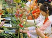 Ikebana: l'arte delle composizioni floreali ritrovare stessi