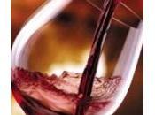 Vini, classifica migliori 2013 secondo Wine Spectator