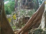 Cambogia: Siem Reap meraviglie Angkor