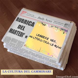LA RUBRICA DEL MARTEDI'. 30  SETTIMANE....DI LIBRI #14 - LEGGERE PER ...UN LIBRO TRA LE MANI