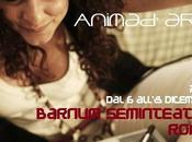 Daria Venuto, tutte sfumature vivo Barnum Seminteatro Roma, all'8 dicembre 2013.
