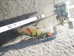 Shimano Yasei Jerk 4oz & Perch Storm