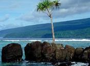 Attrazioni perdere Taveuni Island