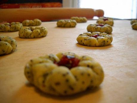 making biscuits with poppy-seeds and cranberries..