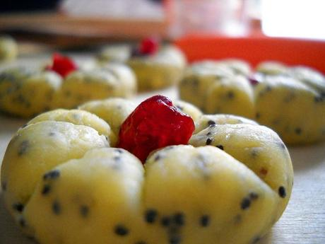 biscuits with poppy-seeds and cranberries