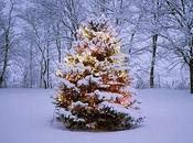 Wishlist Natale