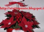 Stella Natale speciale