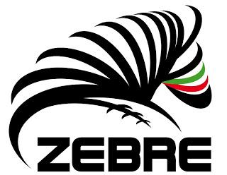 Le Zebre impegnano Ulster a Belfast