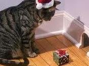 Buon Natale? piccolo dono