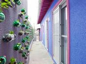 Ricicla plastica coltiva orto casa!
