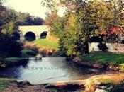 foto della settimana: ponte Rubicone, dove dado tratto