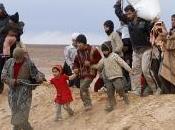 Eurogroup Siria: progetto solidarietà 2014