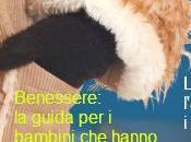 Manine (Inverno 2013/14) newsletter delle attività bambini
