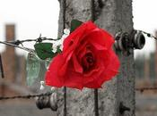 Giorno della Memoria 2014: programmazione speciale Rai, Mediaset, Sky, Discovery, Laeffe