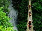 Costa Rica suoi parchi naturali