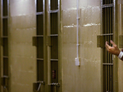 Governo Letta porrà fiducia carceri