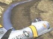 storia presunto Crash raccontata testimone oculare