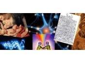 Legami vibrazionali esseri