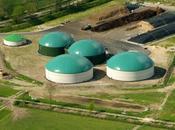 Manutenzione ottimizzazione degli impianti biogas: BioEnergy Italy 2014
