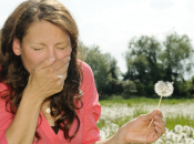 inverno mite fioriture anticipate: ecco causa delle allergie gennaio