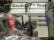 Test Bahrein Sulla Sauber compare monkey Seat