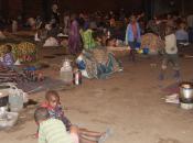 """Appello Unicef: """"Raccogliere milioni bambini"""""""