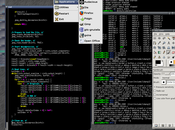 (Joe's Window Manager) desktop environment sistemi Linux.