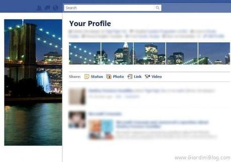 preview profilo facebook