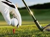 Belmondo Durante vincono golf