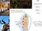 Tenuta Fessina Vinexpo Asia-Pacific Hong Kong maggio 2014 D&P Selezioni
