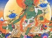 Wallpaper: Tara