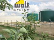 Wolf System International azienda leader BioEnergy Italy 2014