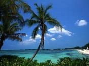 Partire Bahamas: natura incontaminata